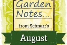 August Garden Notes / Tasks you might perform in the garden in August in the St. Louis, Missouri area.