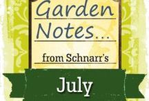 July Garden Notes / Tasks you might do in the garden in the St. Louis, Missouri area.