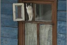 Waar een deur dichtgaat, gaat een raam open. / Het gezegde 'Waar een deur dichtgaat, gaat een raam open'. Het betekent: als er een weg wordt afgesloten, komt er altijd een andere weg vrij.
