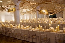 """Ceiling Treatments / by """"I Do""""...Balloons, Weddings, & Events"""