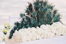 "Peacock Weddings / by ""I Do""...Balloons, Weddings, & Events"