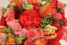 orange bouquets and shades of