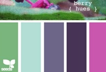 Color: Purple + Turquoise