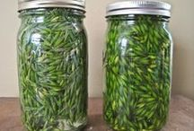 Herbalism & Alternative Medicine