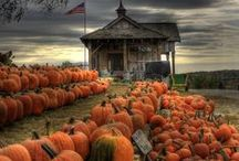Halloween / Decorations, Recipes, photos of the season