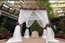 Summer Wedding / July 18, 2015 - Courtyard Ceremony - GW Terrace Cocktail Hour - Seasons Reception