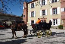 Créateurs, artisans d'art et producteurs / Un marché des créateurs, artisans d'art et producteurs a eu lieu au château de Riveneuve. Un franc succès! www.votre-chateau-de-famille.com