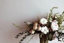 flora. / by Amanda Macedo