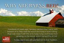 Farm Fact Friday / Each Friday, we post a new, fun fact from the farm!  #farmfactfriday