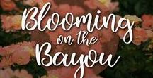 Blooming on the Bayou