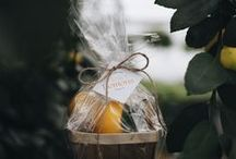 Seasonal Favorites at Hoen's / All photos © Stephanie Paxton