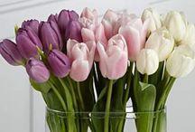 A013- Flower Ideas www.FairviewFlorist.ca fairviewflorist@gmail.com / Www.FairviewFlorist.ca