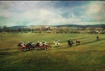 The Art of Horse Racing