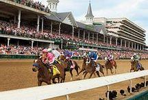 Horse Racing USA