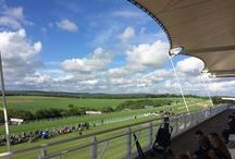 Goodwood Racecourse / Goodwood Racecourse is a horse-racing track five miles north of Chichester, West Sussex, in England controlled by the family of the Duke of Richmond, whose seat is nearby Goodwood House. It hosts the annual Glorious Goodwood meeting, which is one of the highlights of the British flat racing calendar, and is home to 2 of the UK's 31 Group One flat races, the Sussex Stakes and the Nassau Stakes.
