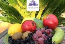 ✨ Blogging ✨ / Blog focusing on health, well being & a balanced diet.