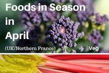 Seasonal food and recipes / Tips about seasonal food and seasonal recipes