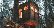 Treehouses / All the magical treehouses I can find