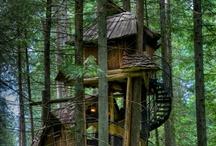 House Dreams  / by Emma Steele