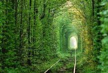 Przyrodnicze wycieczki