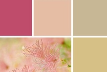Color Inspiration / Color combinations