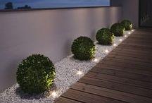 Garden ~ light ,.-~*'¨¯¨'* ☆