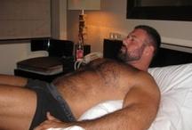 Bears & Hairy Men - Briefs