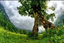 Ekologia Recykling Energia odnawialna Ochrona środowiska