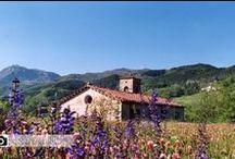 """Chiesa della Corba / Si tratta di una graziosa chiesetta di campagna, poco fuori la cinta muraria del borgo di Castiglione. La chiesa della Corba è citata nella visita pastorale del 1621 dove è chiamata """"Santa Maria della Corba"""","""