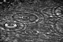 Rain____________________