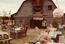 Wedding Day & Party