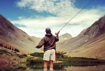 Fly Fishing  / A board for all things related the unique and challenging sport of fly fishing