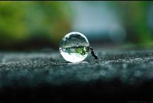 ✿creative Macro Photo༻ஜ✿ / by ✿ Mix Creative  Italy ༻ஜ✿