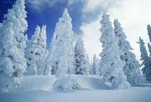 Winter / slow / by Wendy Simpson