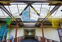 Architectural Drapery in Educational Settings / Metal mesh architectural drapery is a centerpiece in educational institutions across the nation.