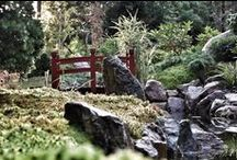 japanese project garden- Norway