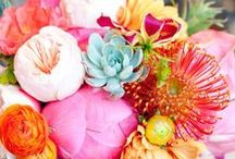 Flower power / Colours and perfume will save the world.