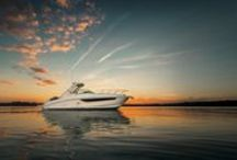 Sea Ray Boats / Sea Ray boats are nothing less than works of craftsmanship, beauty, and innovation. The world's largest manufacturer of quality pleasure boats, Sea Ray features more than 40 models. http://www.lakeunionsearay.com/Page.aspx/pageId/152099/Sea-Ray-Boats.aspx