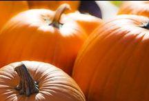 Inspiration Halloween / We love Halloween at Charles Viancin!!!