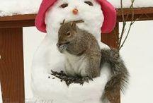 Snowmen Melt Your Heart / by Debra (angelswhiskers) Creech