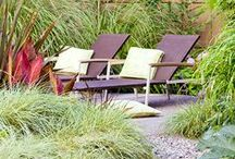 ::Backyard Oasis /                                / by Debra (angelswhiskers) Creech