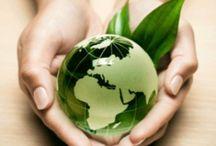 eco - friendly / by Karla Kuri