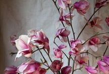 flowers / by Sue McGee