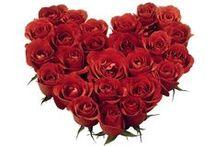 I ♥ Hearts / I Love Hearts!