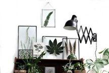 Mi casa ideal /  Inspiración, ambientes y ideas de decoración interior.