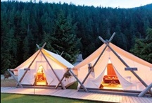 Camping, Glamping & Outside Fun!  / by SocialMoms