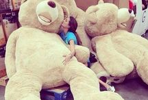 Giant Teddy Bears / by Chelsey Moore