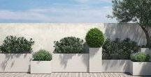 Progettare Spazi Verdi / Progettazione e realizzazione giardini e terrazzi