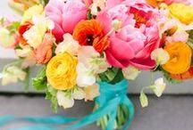 GARDEN : Flowers, Flowers Everywhere!