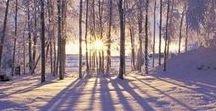 Nature and Seasons II - Winter - Christmas